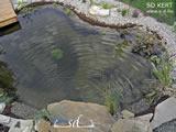 Kerti tó és környéke