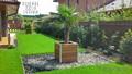Szubtrópusi kertépítés